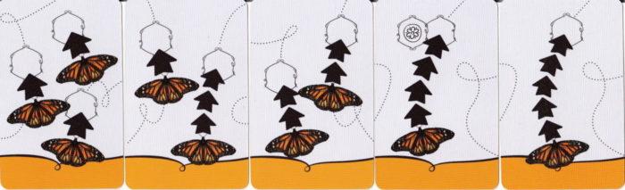 マリポーサス アクションカードのイメージ